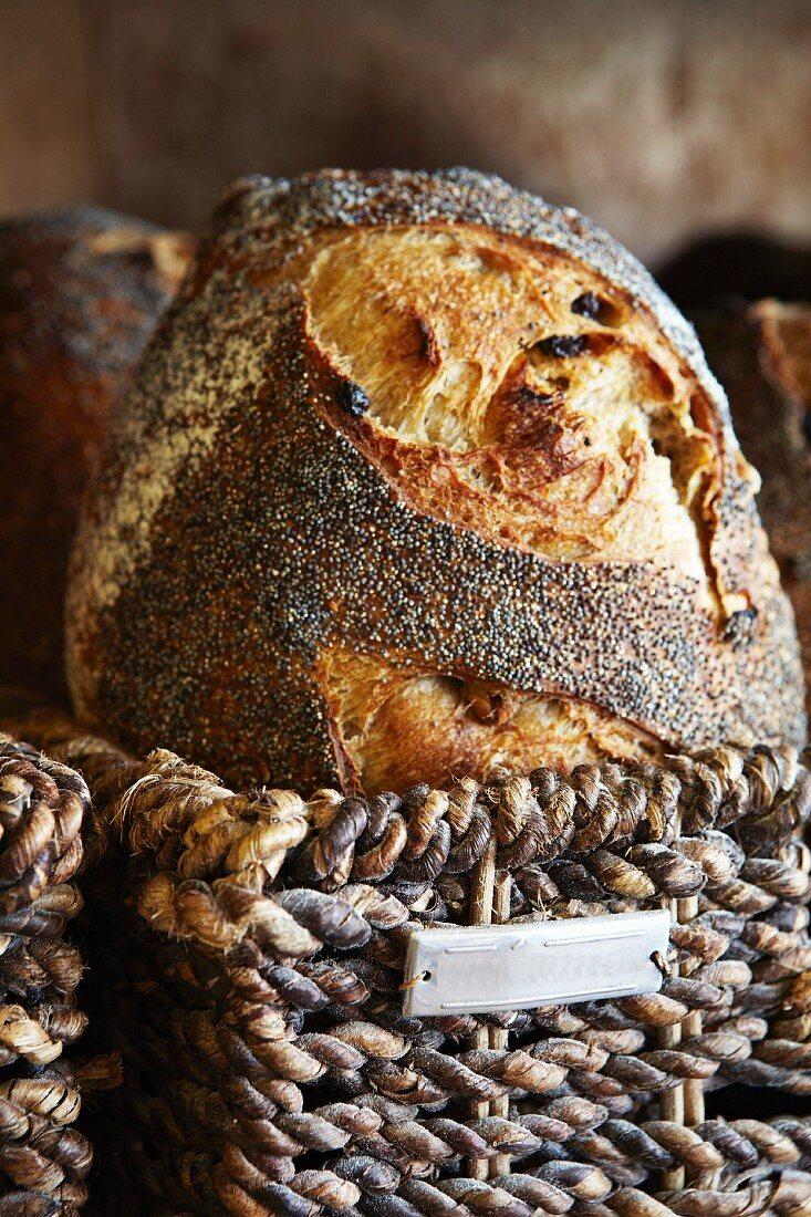 Poppyseed bread in a basket