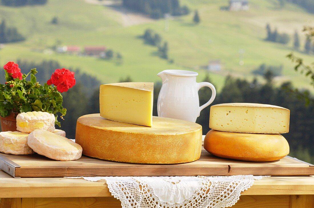 Käseplatte aus Salzburg, Österreich (Schmierkäse, Bergkäse, Almkönig und Bierkäse)