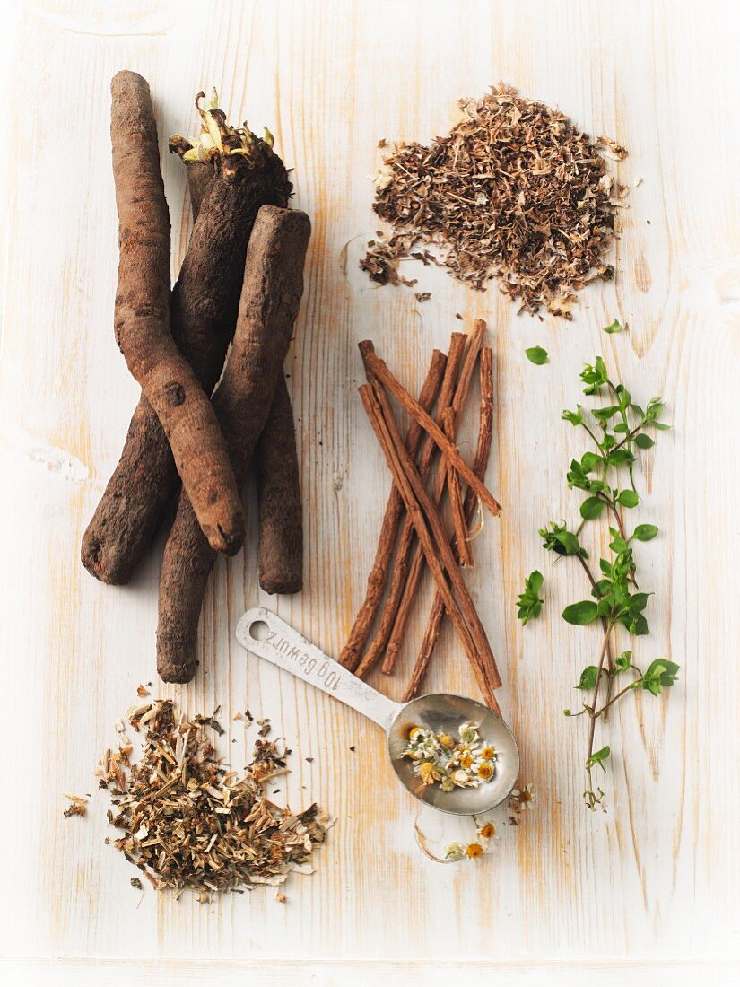 Plants for treating thyroid issues – Icelandic moss, black salsify, liquorice, chickweed, bugleweed and chamomile