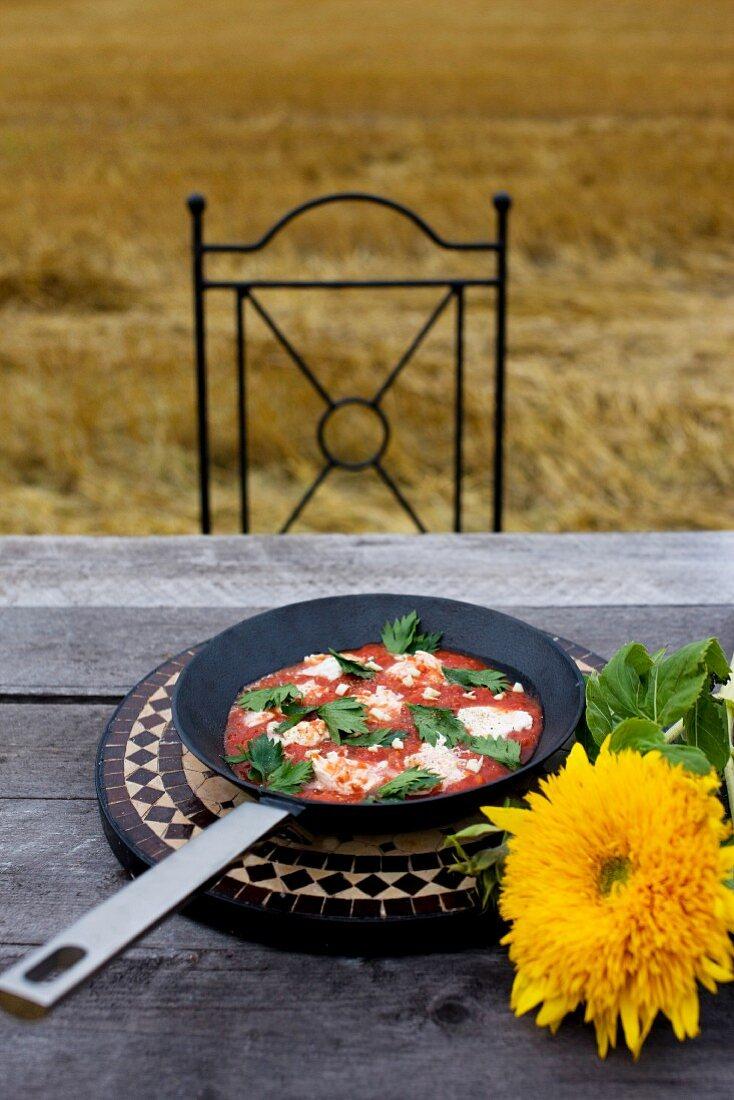 Mozzarella alla pizzaiola (mozzarella with tomatoes and basil, Italy)