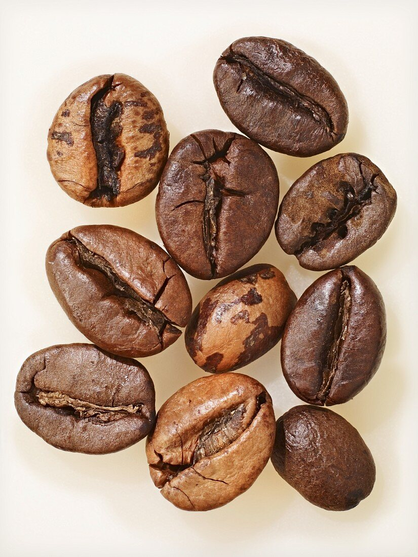 Ten coffee bean, extreme close-up