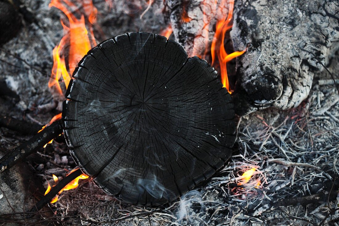 A slice of acacia wood burning
