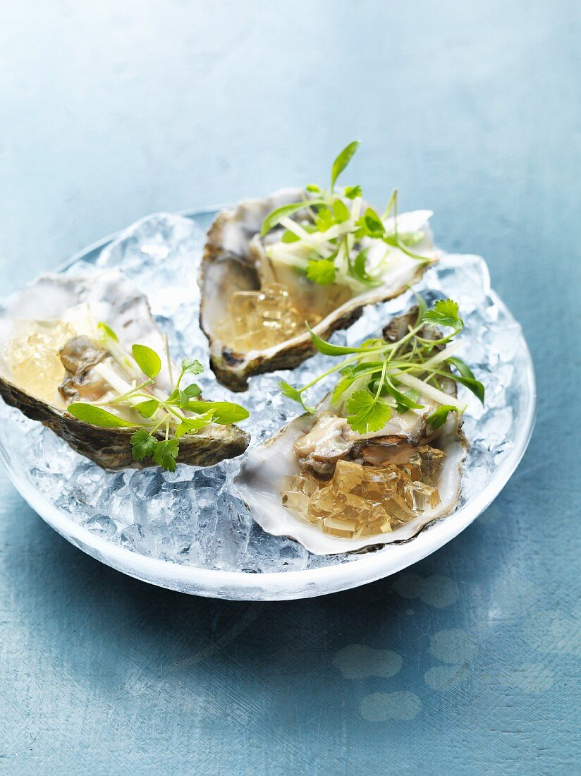 Oysters with beer jelly, apple, limes and coriander