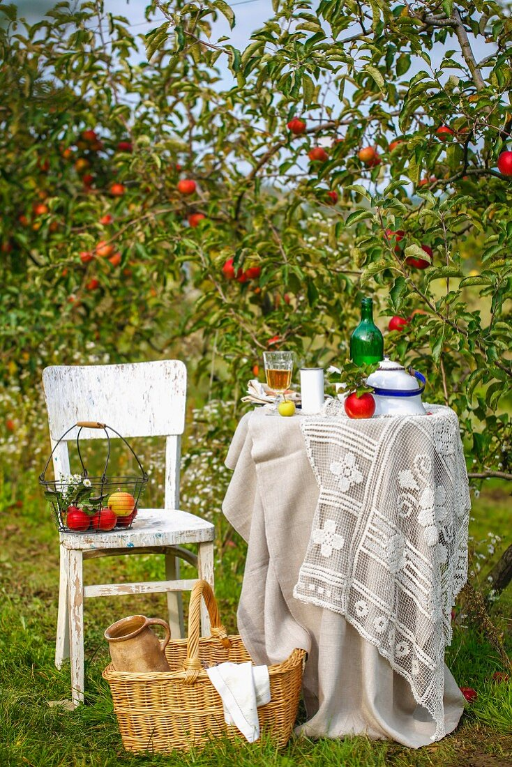 Summery atmosphere with set table in garden in front of apple trees
