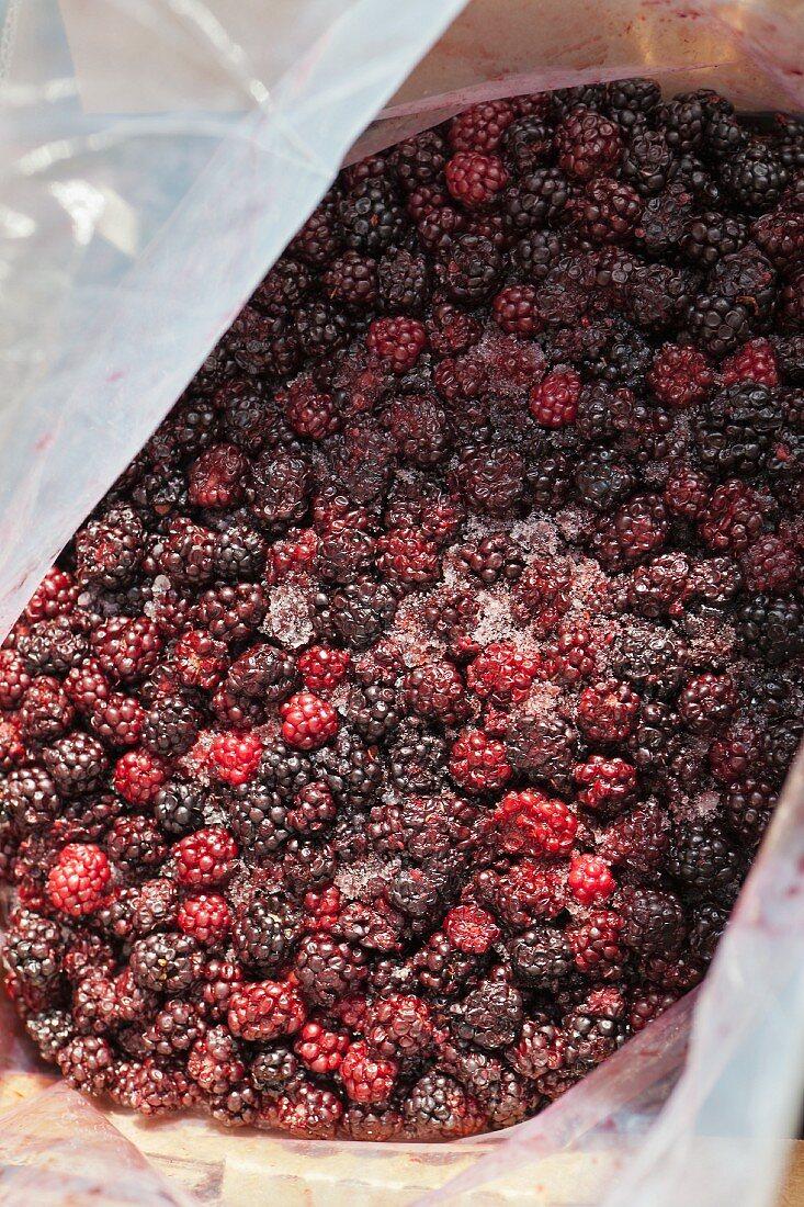 Frozen blackberries in a container