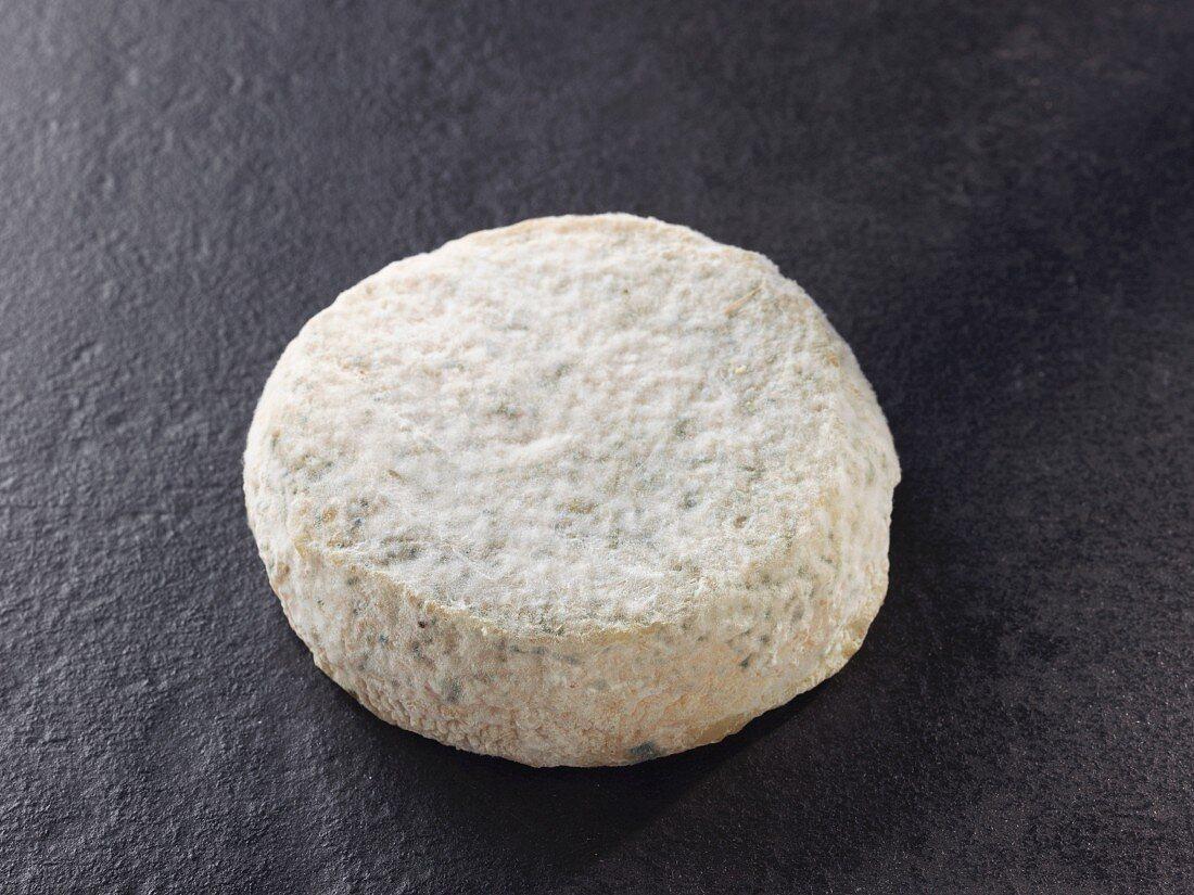 Pigouille – French sheep's milk cheese