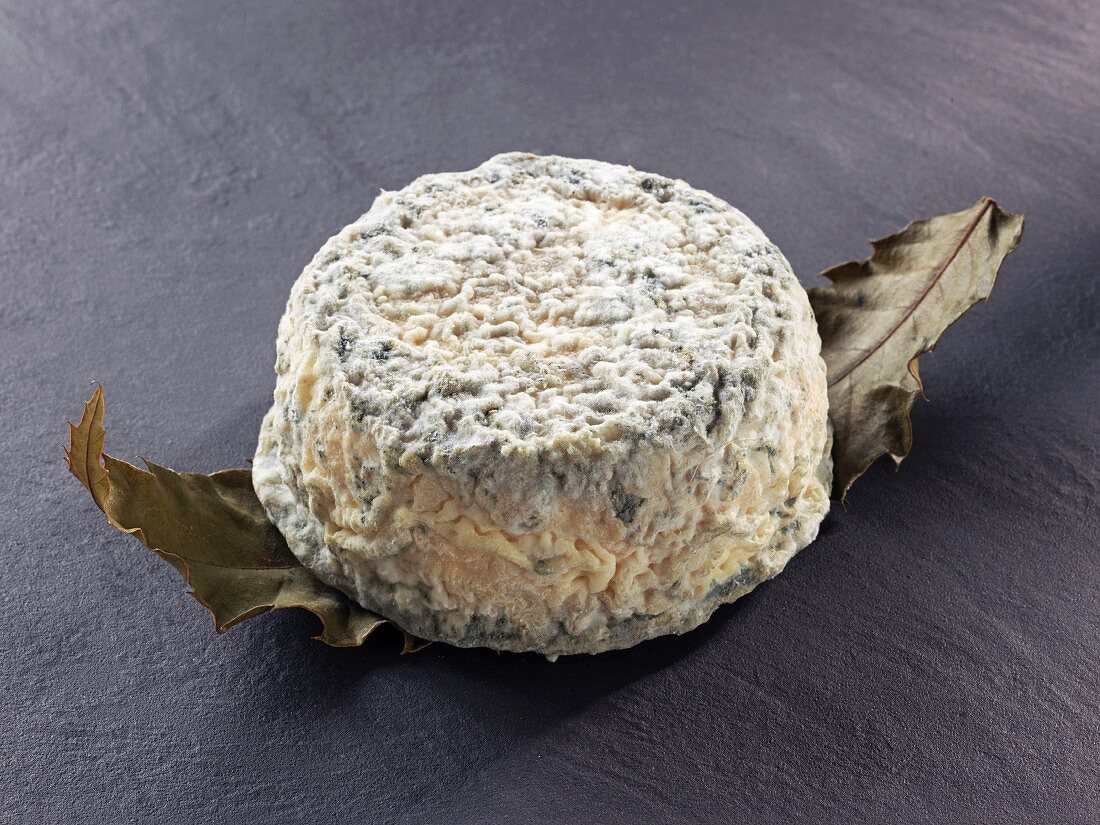 Chataignier (French goat's cheese)
