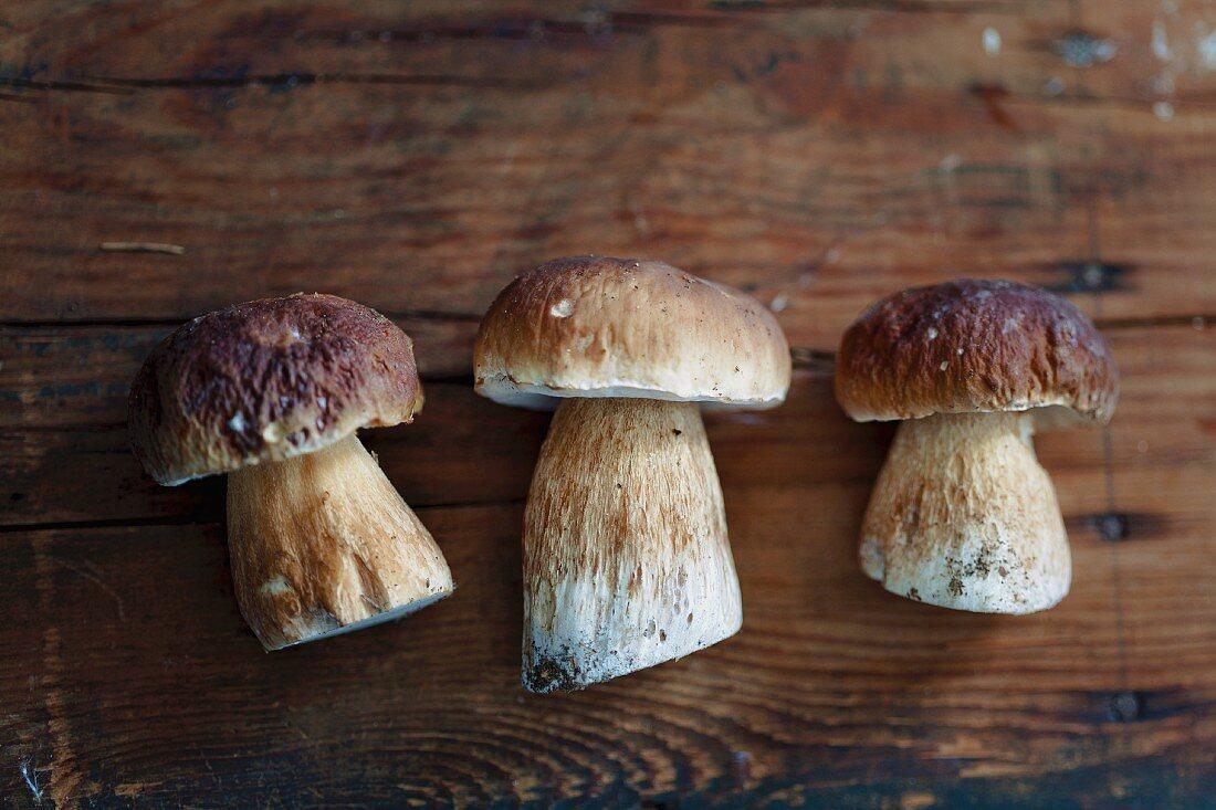 Three fresh porcini mushrooms on a wooden board