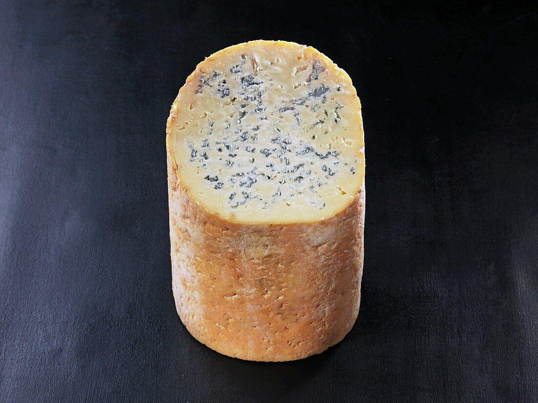 Fourme de Montbrison (French cow's milk cheese)