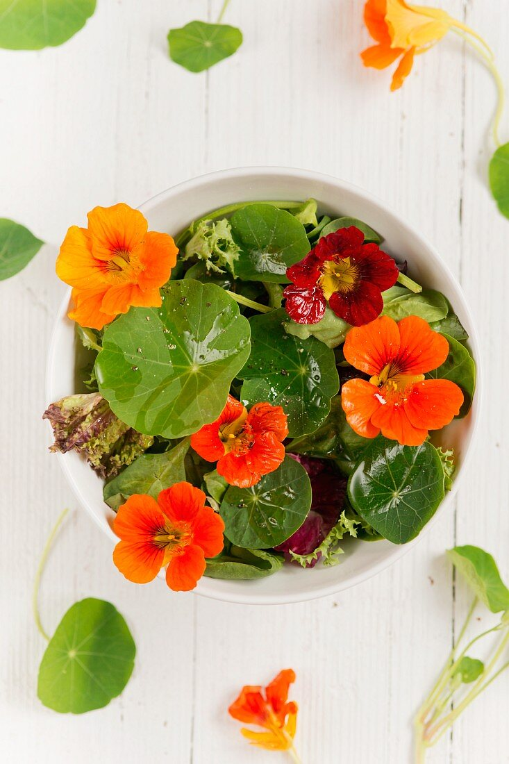 A colourful salad with water cress flowers and leaves