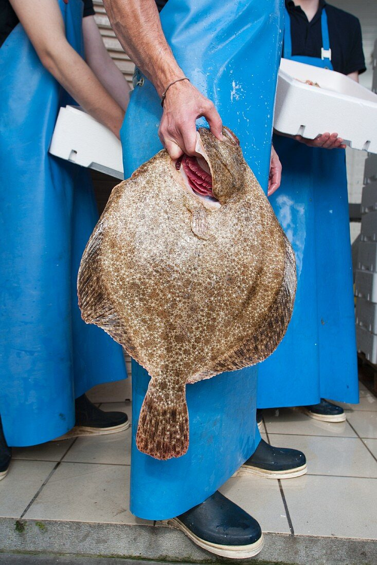 A fish seller holding a large turbot