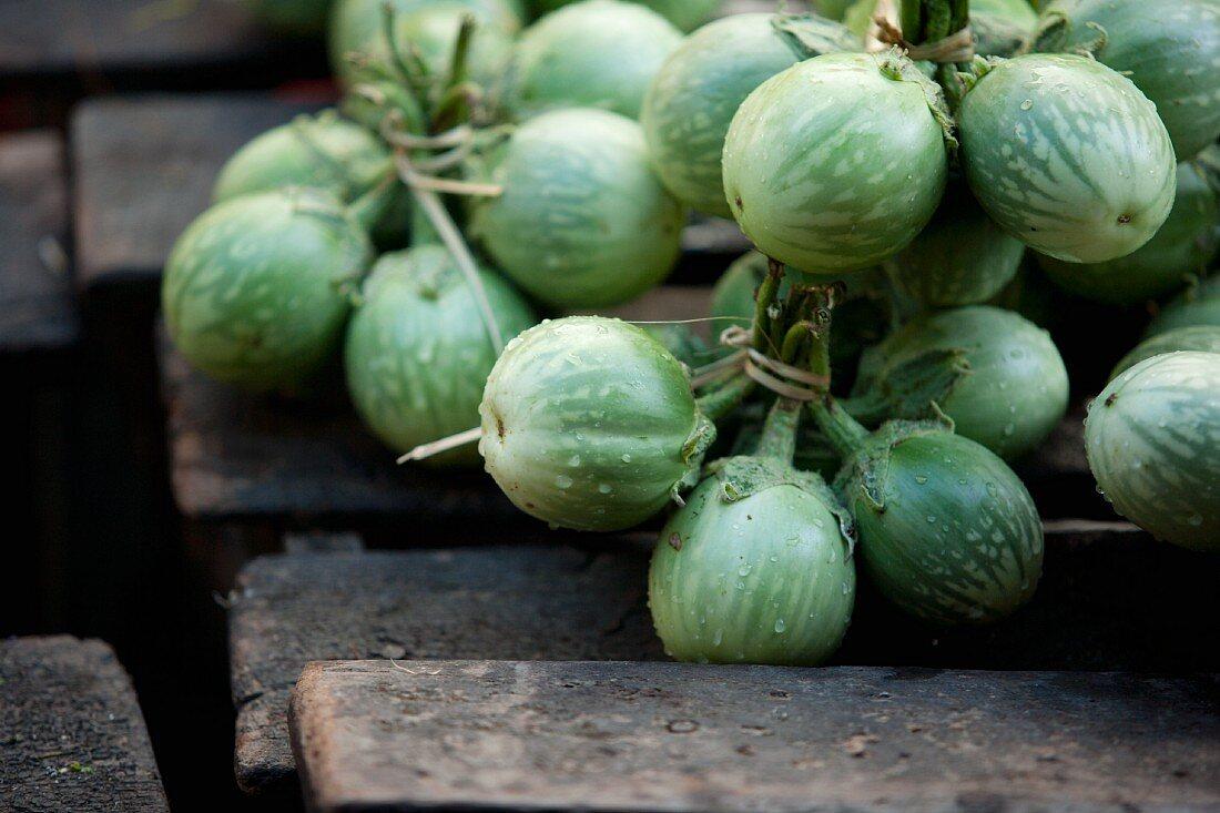 Mini aubergines from Myanmar