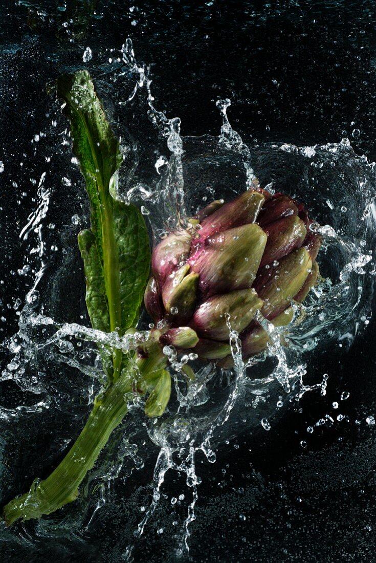 And artichoke falling into water