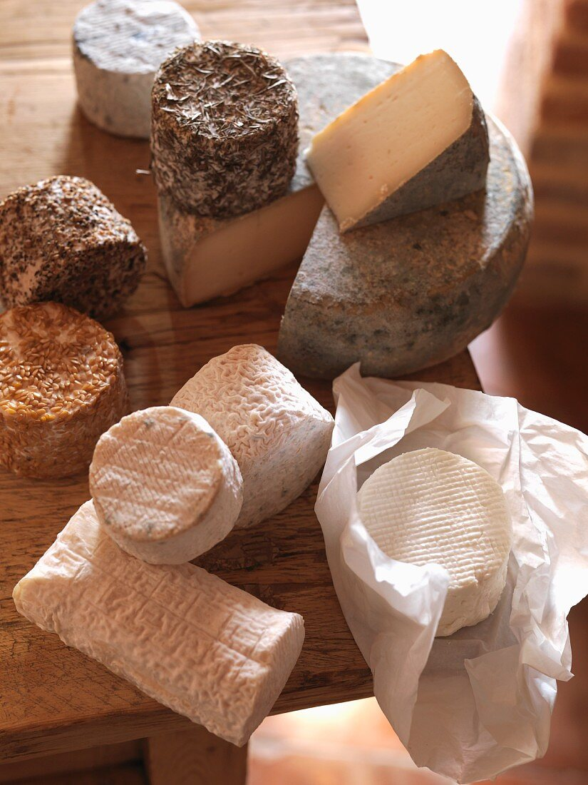 Various types of goat's cheese on a wooden table
