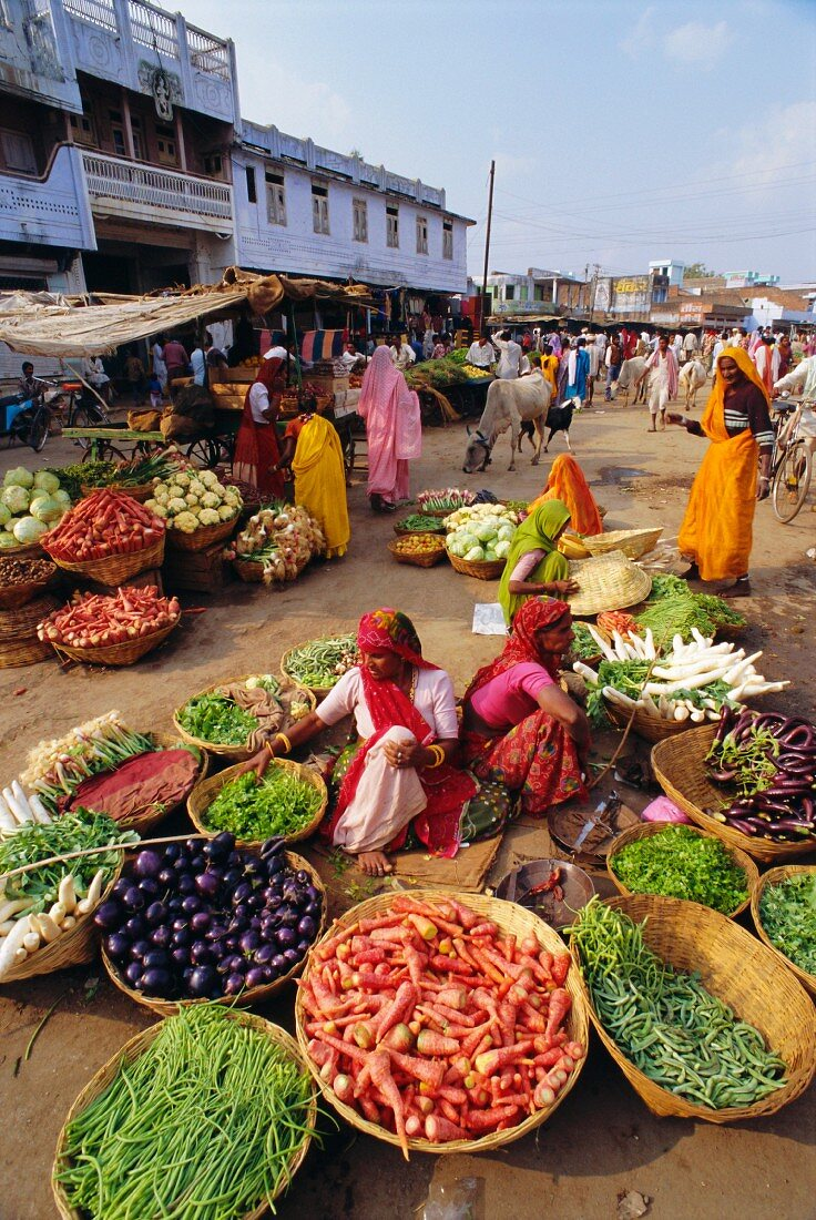Fruit and vegetable sellers in the street, Dhariyawad, Rajasthan State, India