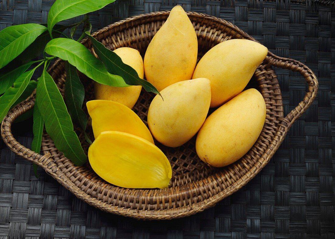 Yellow mangos in a basket