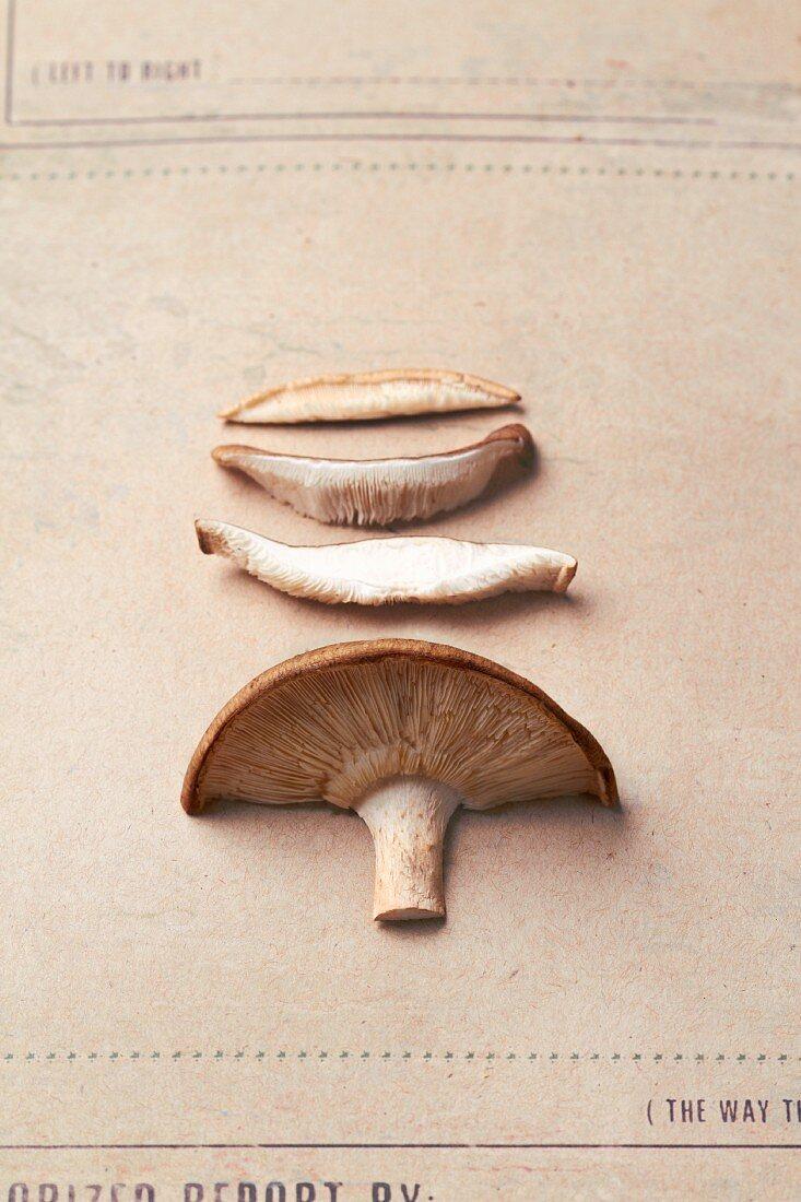 A sliced shiitake mushroom
