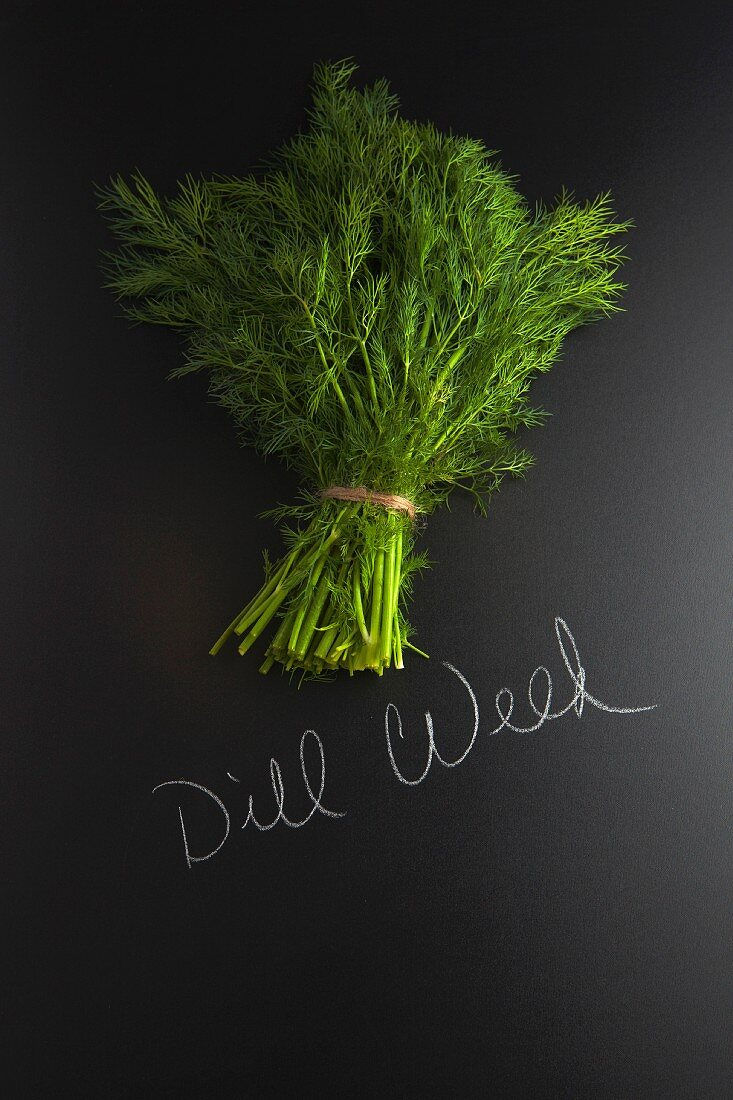 Fresh dill on a slate surface with a label