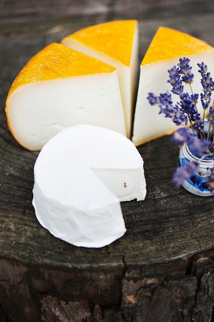 Soft goat's cheese and Camembert with caraway seed from the cheese dairy Horn in Drehbach