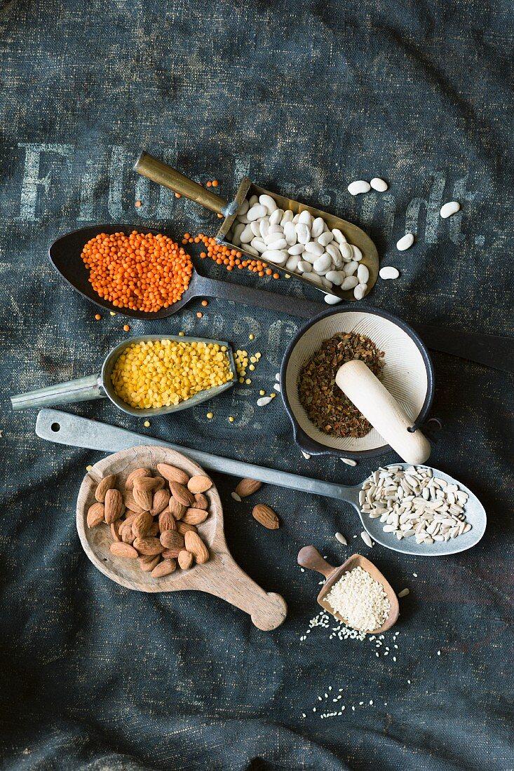 Legumes, kernels and seeds