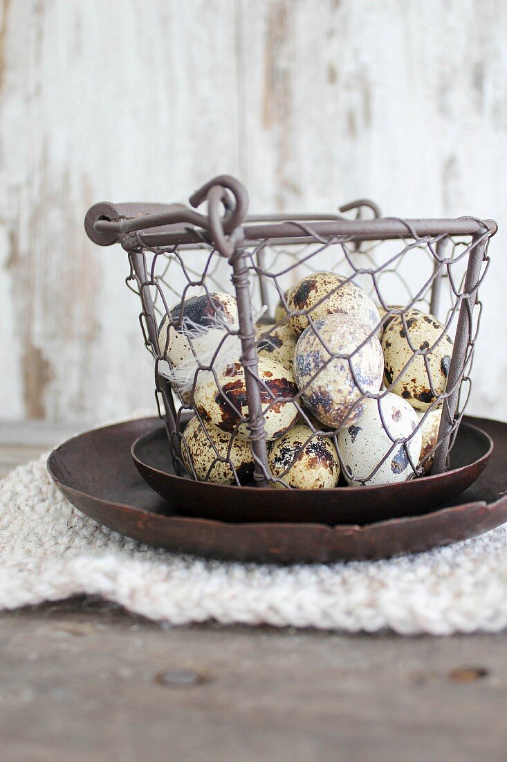 Quail's eggs in a wire basket