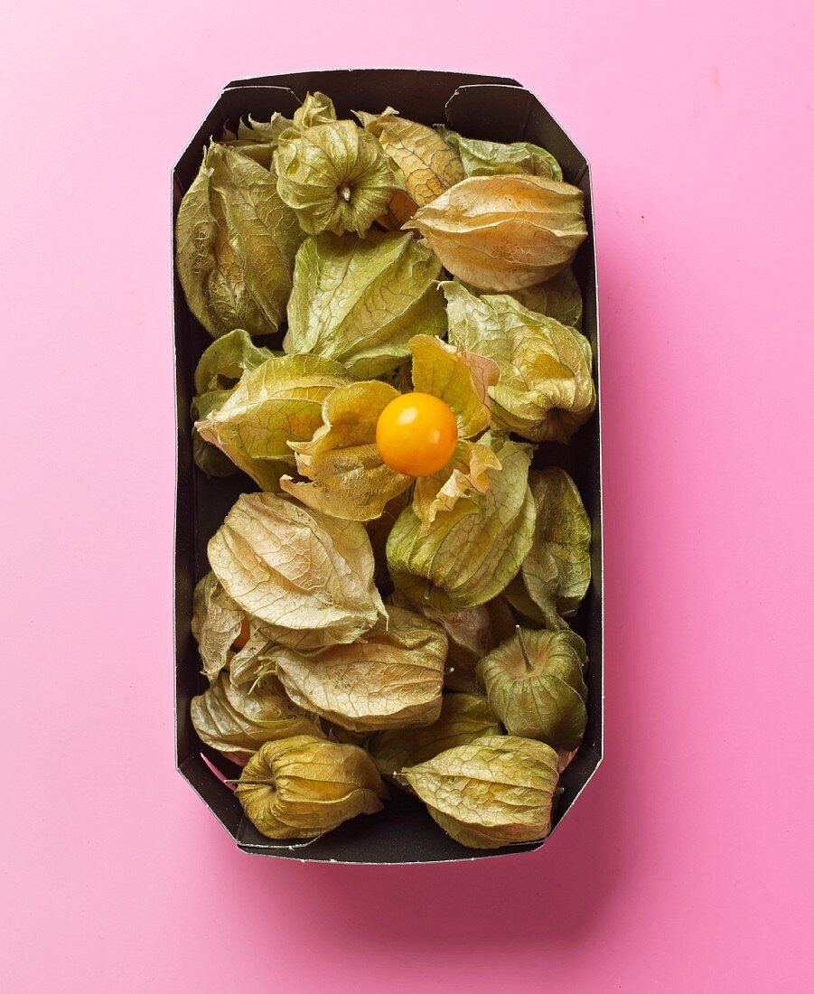 Physalis with husks in a paper dish