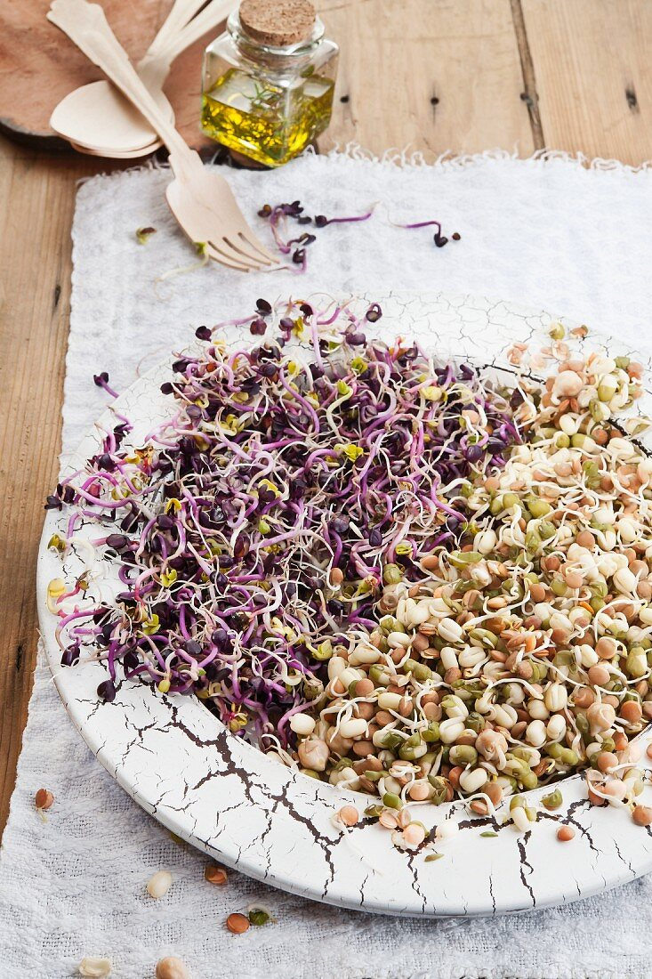 Various bean sprouts on a vintage plate