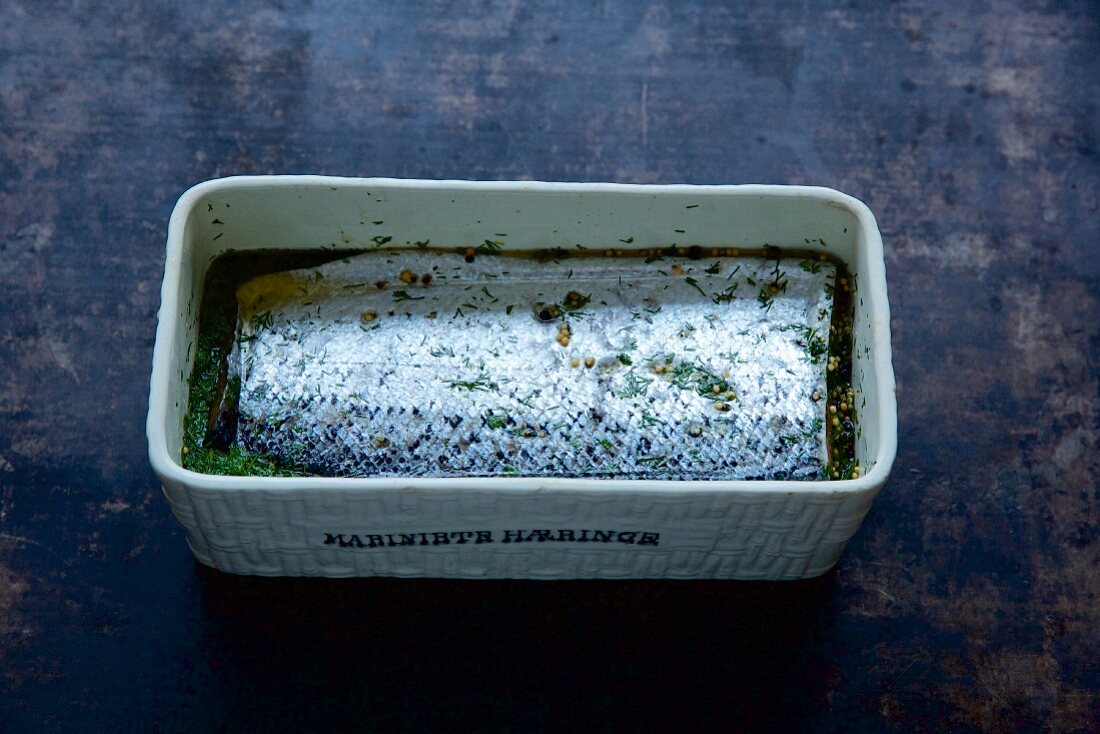 Graved lax being being made: raw fillet of salmon in a rectangular container with spices and dill