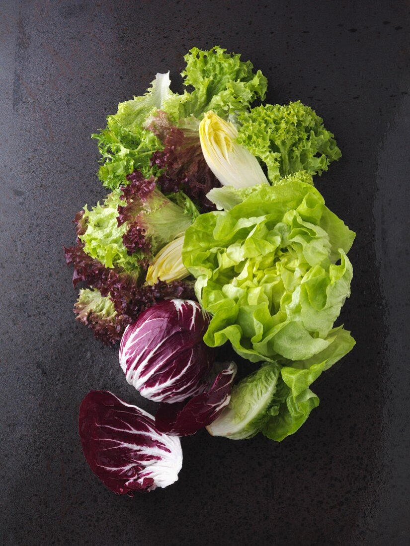 An arrangement of various lettuce leaves