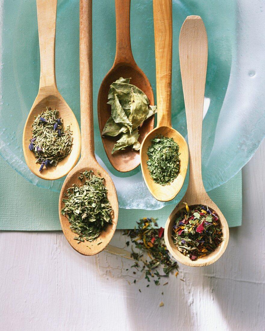 Verschiedene getrocknete Kräuter und Teemischungen auf Holzlöffeln