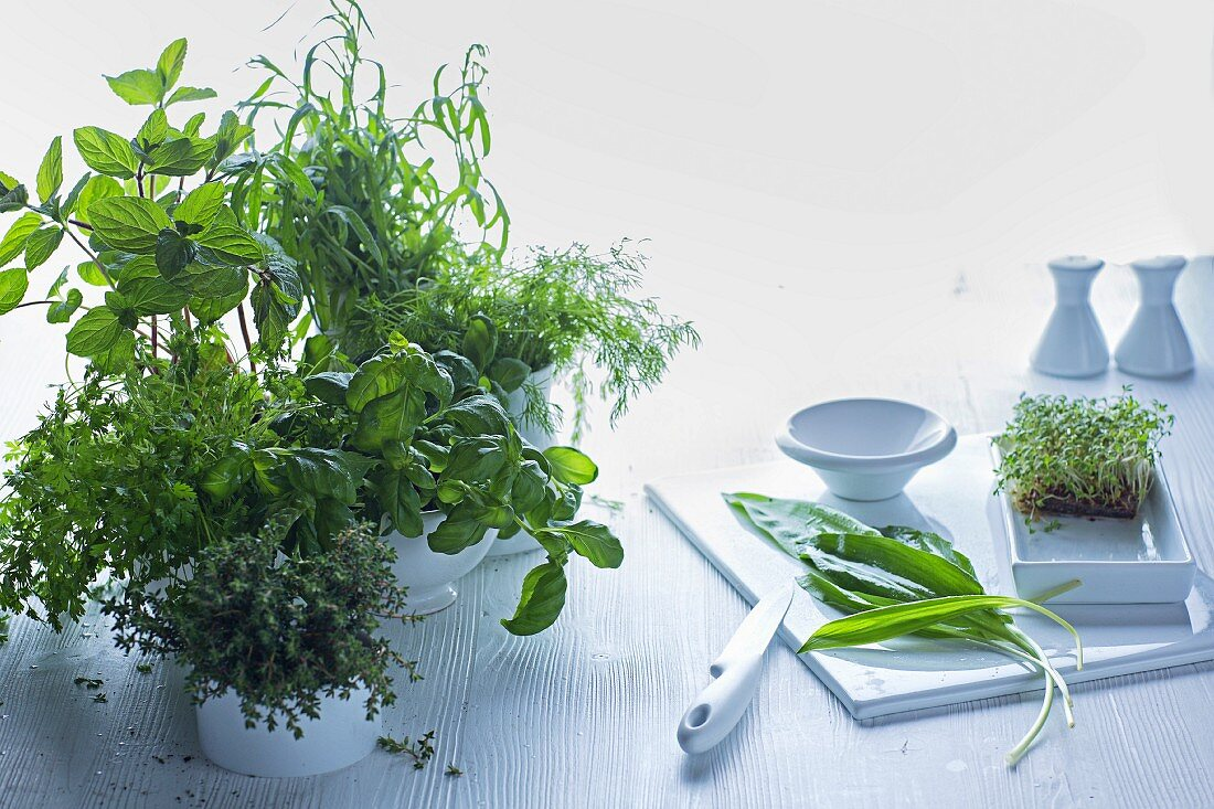 An arrangement featuring a chopping board and pots of fresh kitchen herbs