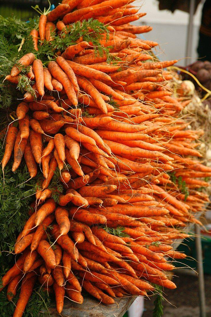 Freshly dug, organic carrots at a farmers market in Bantry, Ireland
