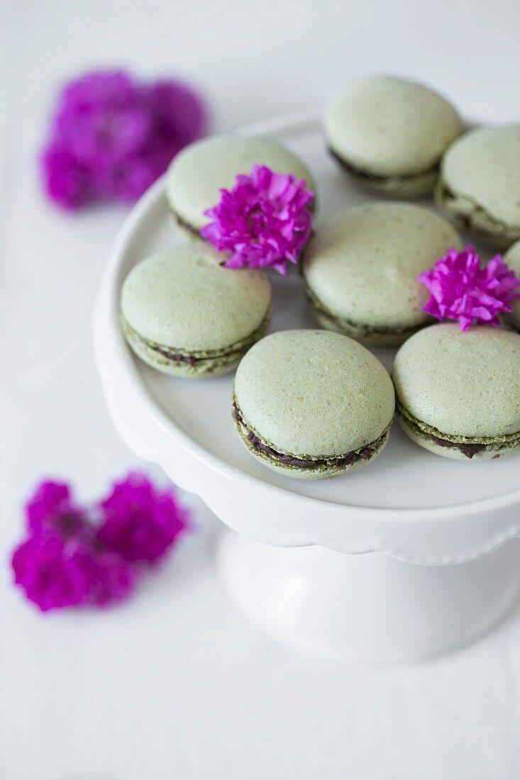 Green macaroons with matcha tea and chocolate ganache on cake stand