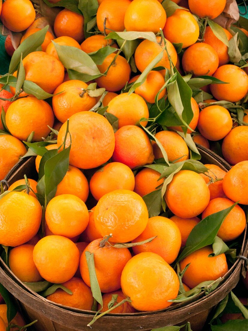 Navel oranges with leaves in a basket