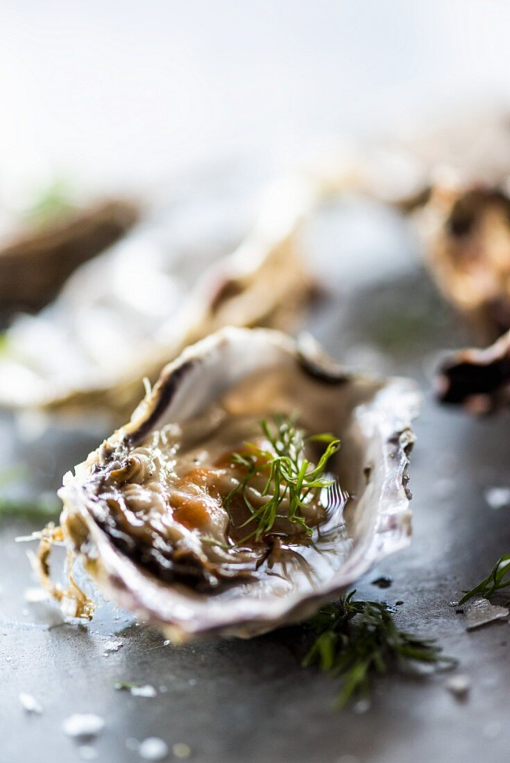 An oyster with dill, salt and spicy sauce