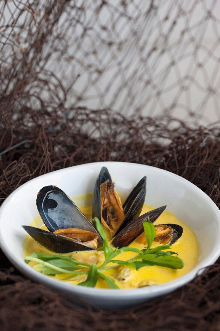 Mussels in saffron sauce
