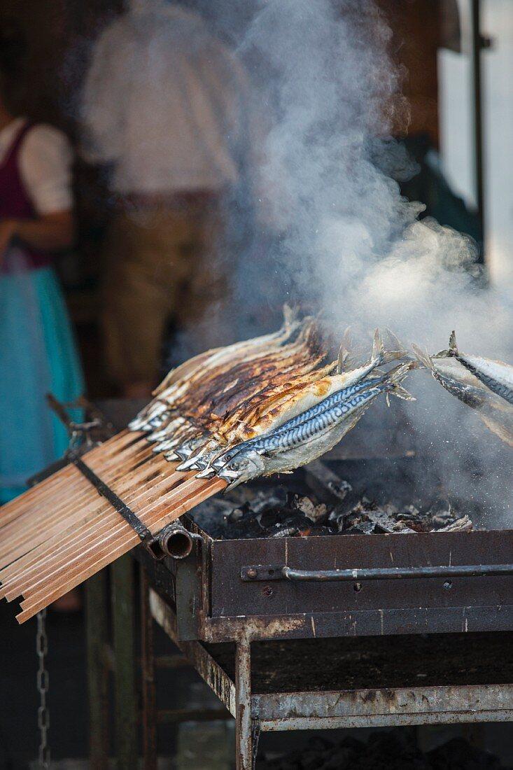 Fish grilled on sticks, Bavaria