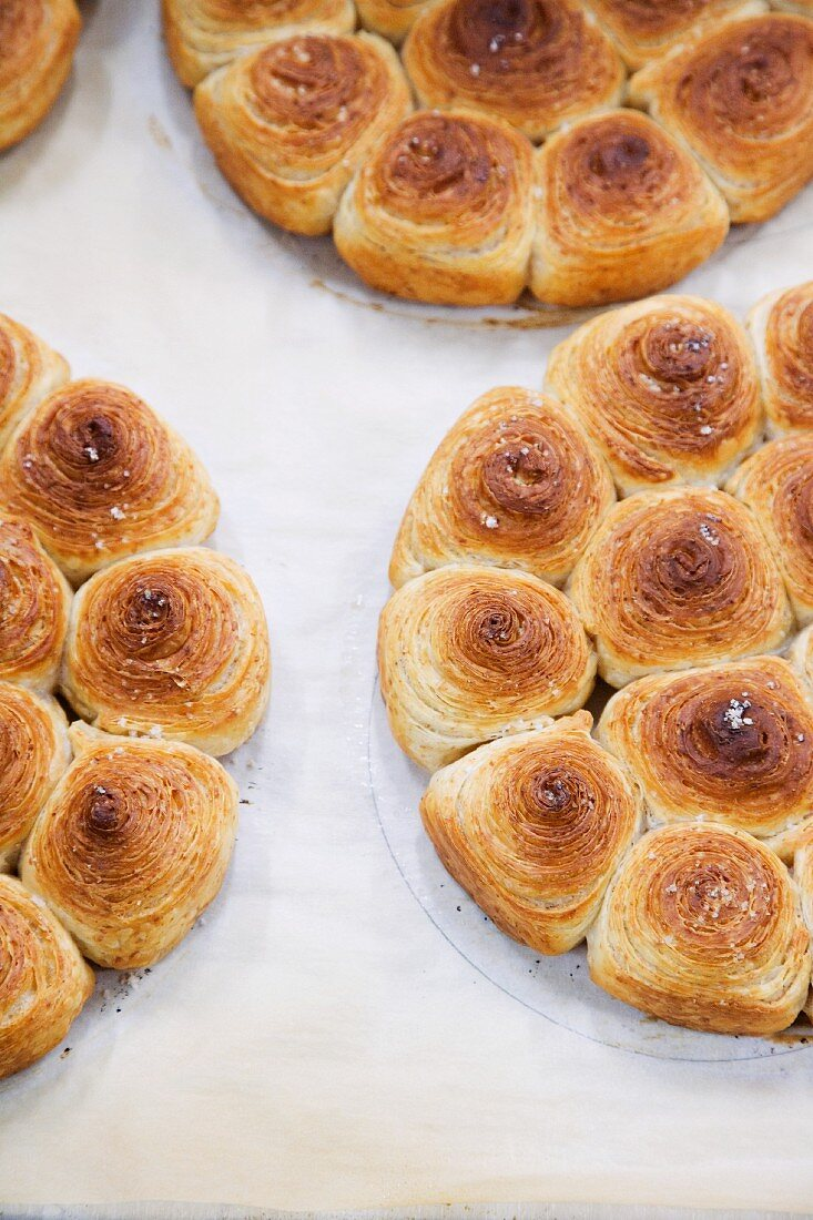 African bread 'suns'