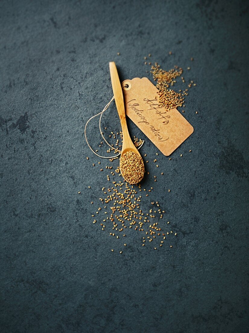 Alfalfa seeds on a wooden spoon with a label