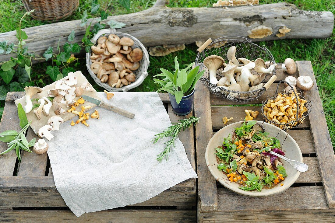 An arrangement of freshly picked mushrooms and a mushrooms dish outside on a wooden crate