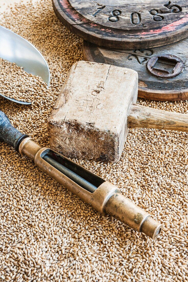 Beer brewing tools on a pile of barley malt
