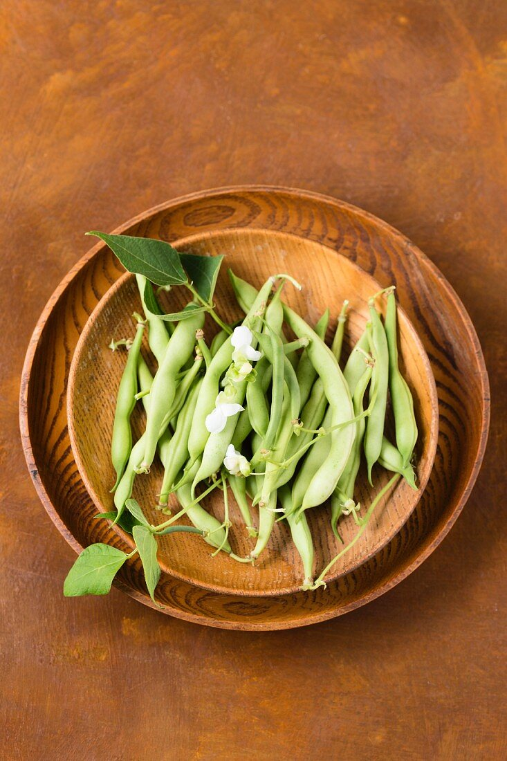 Green beans and bean flowers