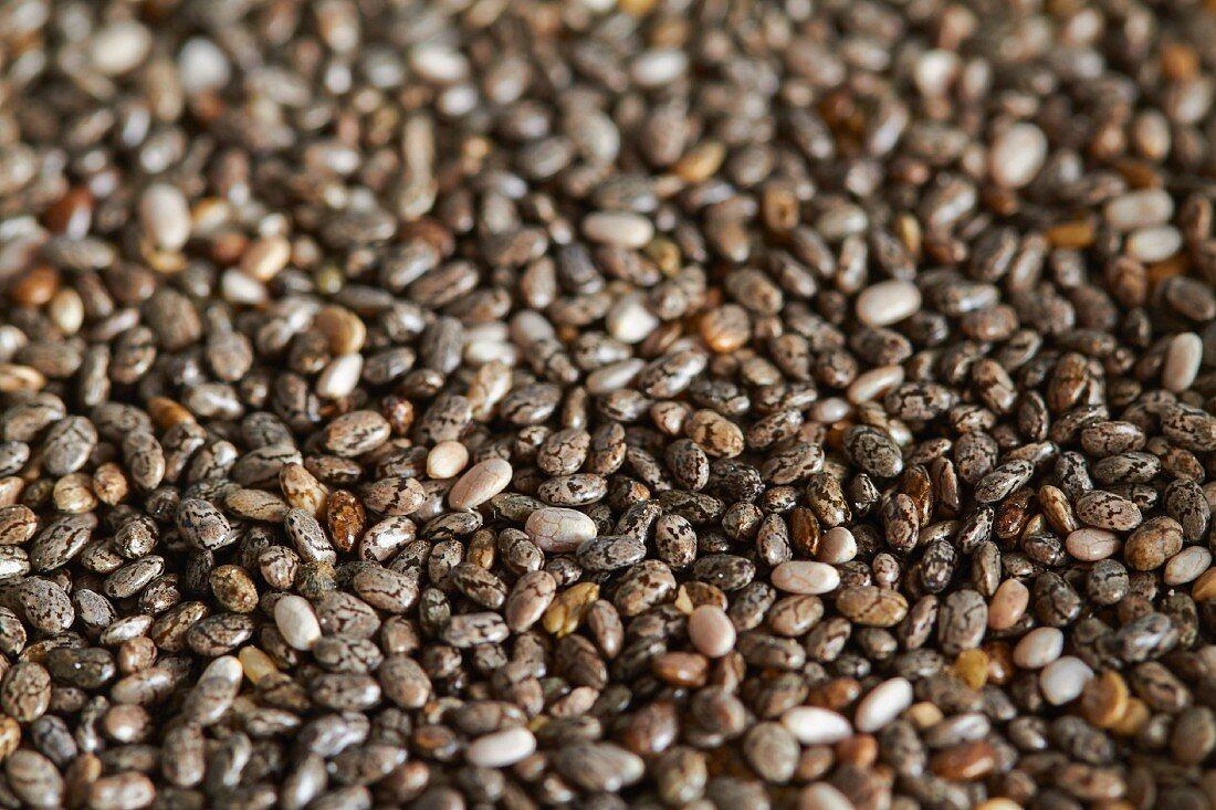 Chia seeds (full frame)