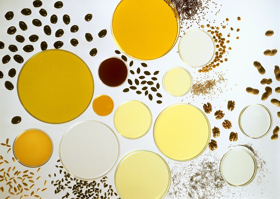 Bowls of different types of edible oils & their ingredients