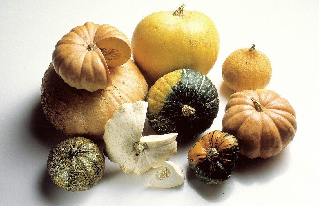Assorted Pumpkins and Squash