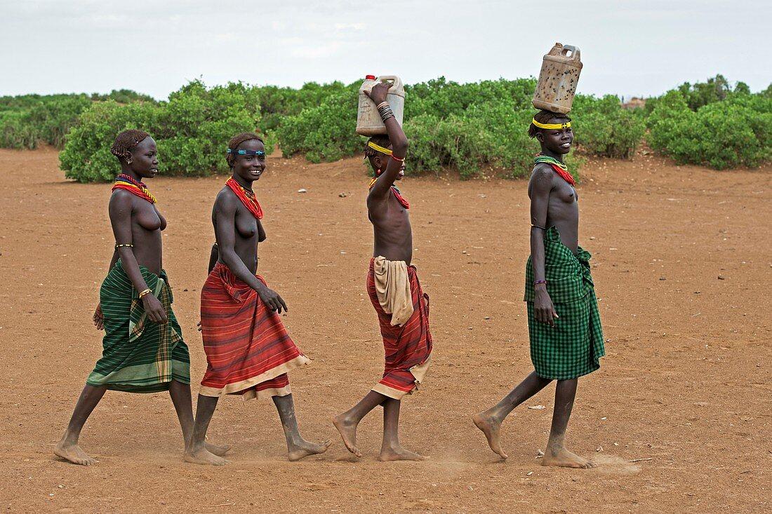 Young Dassenech girls carrying water