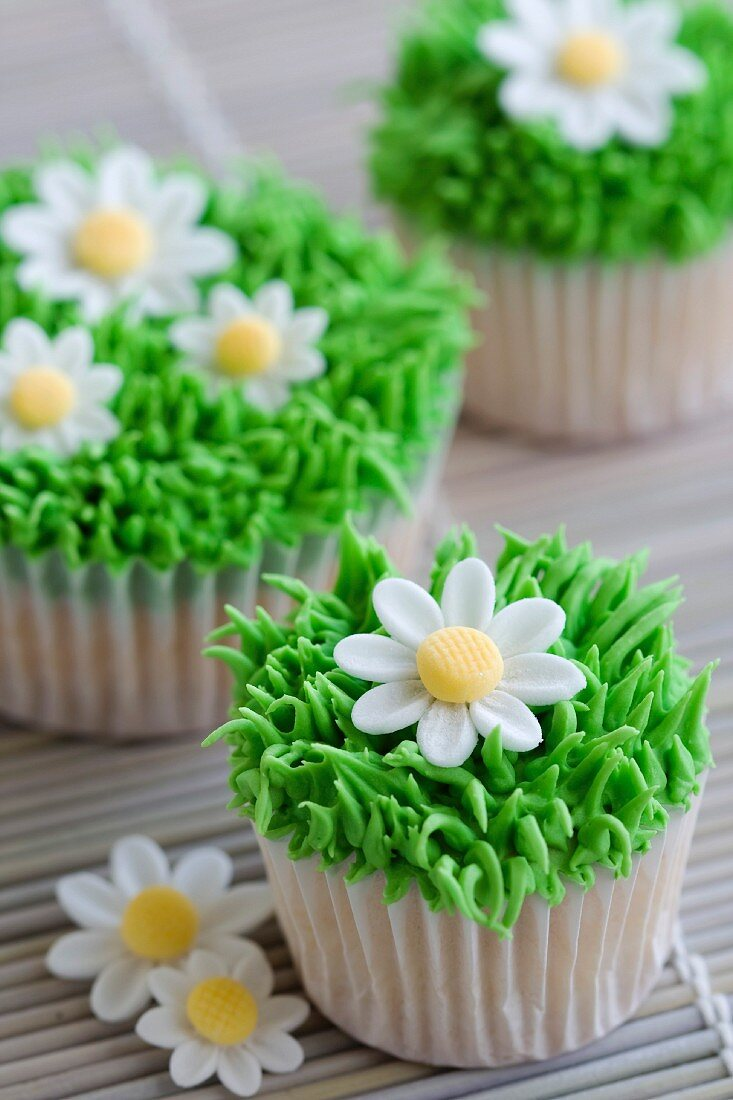 Cupcakes decorated with frosted grass and sugar daisies