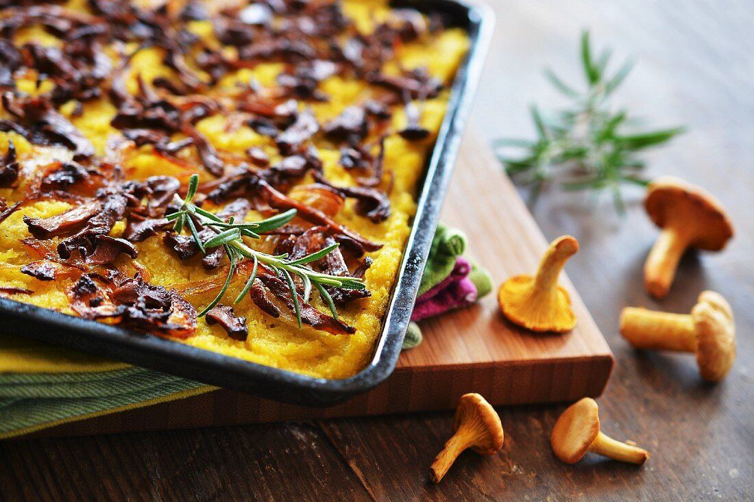 Polenta cake with chanterelle mushrooms and onions on a baking tray next to fresh mushrooms and sprigs of rosemary