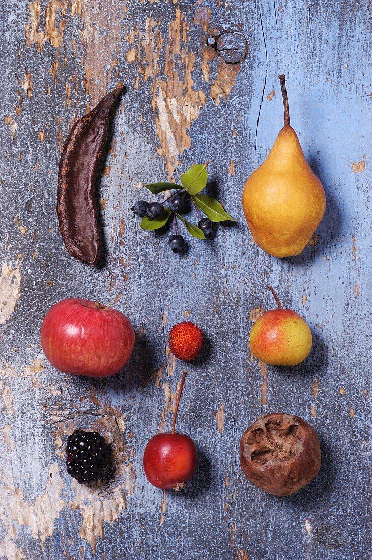 Verschiedene alte Obstsorten (Draufsicht)