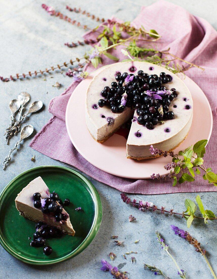 Frischkäsekuchen mit Blaubeeren, Lavendel und weisser Schokolade